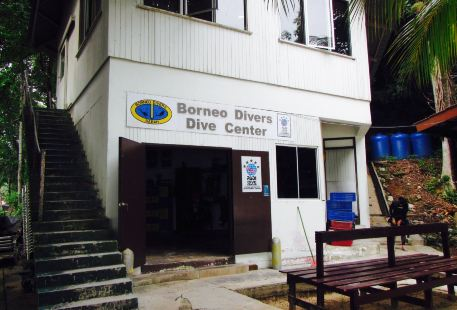 Borneo Divers Training Institute