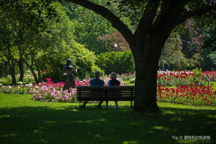 Montreal Botanical Garden4