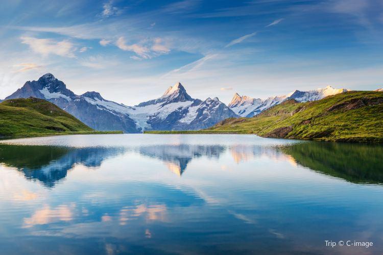 Grindelwald4