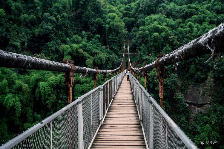 대나무 협곡 풍경명승구(진지계곡)2