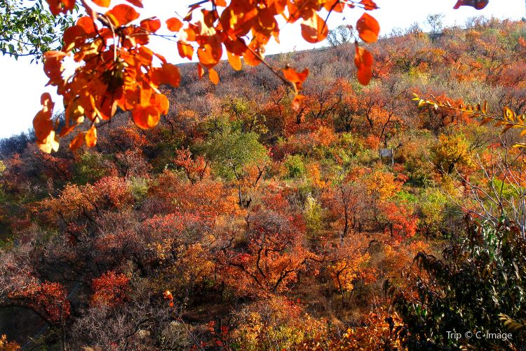 Fragrant Hills Park3