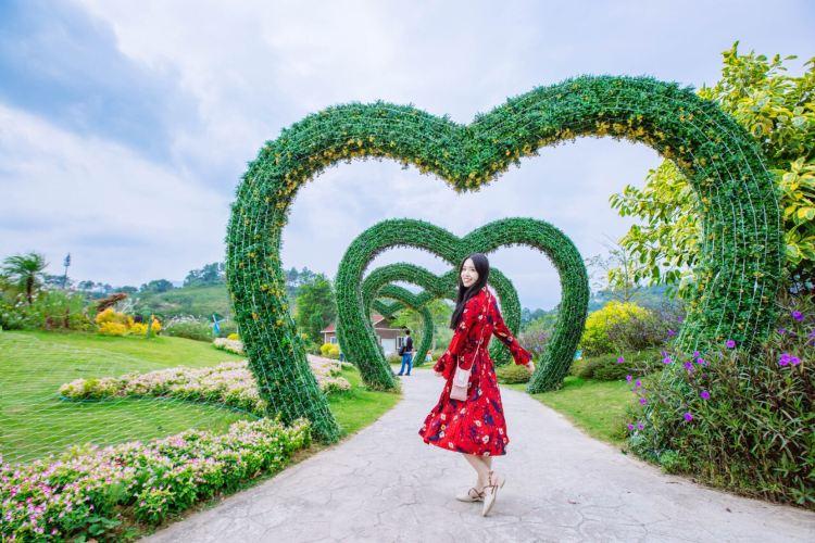 Ke Tianxia Zui Die Gulvse Manor3