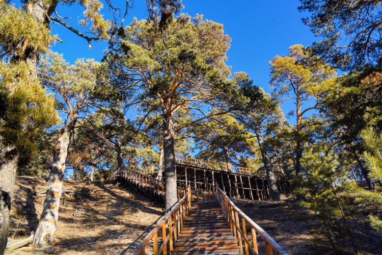 하이라얼 서산국립삼림공원2
