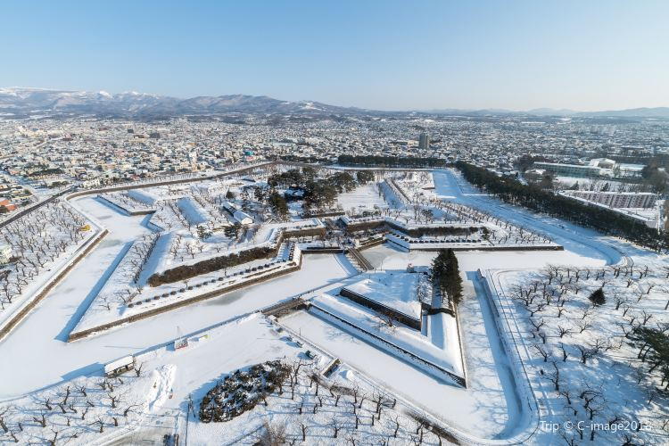 Goryokaku Park2