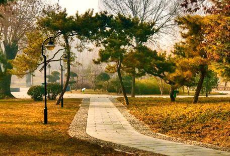 Yuxi Park