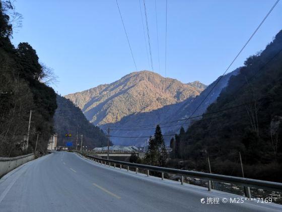 Fengtongzhai National Natural Reserve