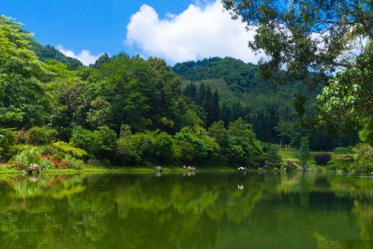 Fairylake Botanical Garden4