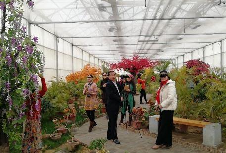 Huike Ecological Garden