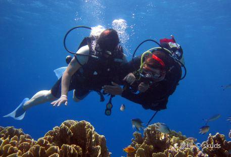 Dive Saint Lucia