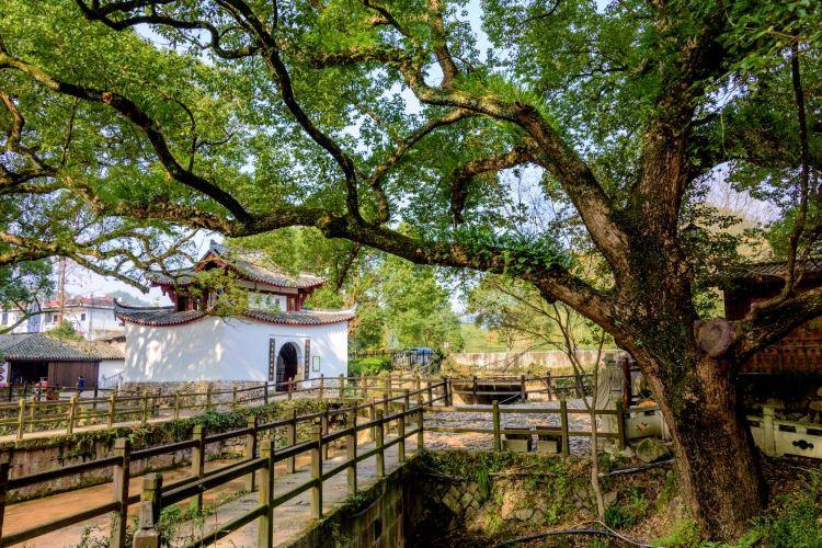 Guyan Huaxiang Scenic Area1
