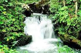 Ulu Kalumpang Forest Reserve