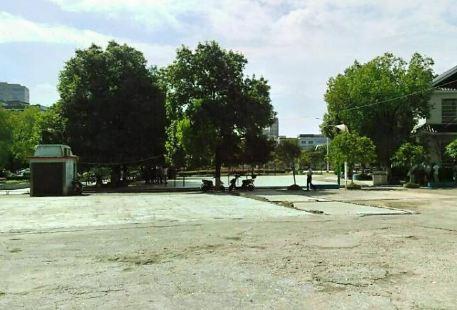 Baizhuhu Square Qiyangxian