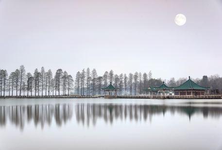 The Luoyan Island