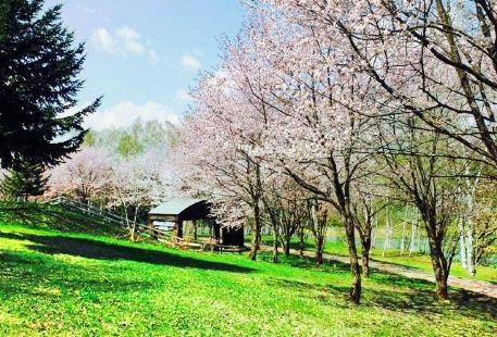 Higashikagura Forest Park