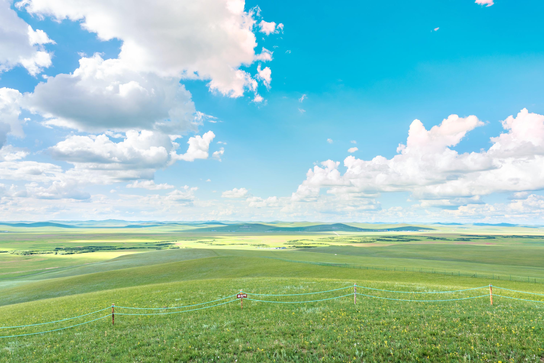 烏拉蓋草原