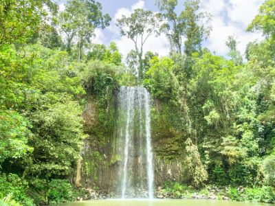 Millaa Millaa Waterfall Circuit