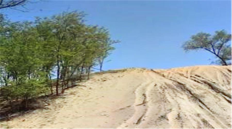 Dali Shayuan Tongzhou Desert