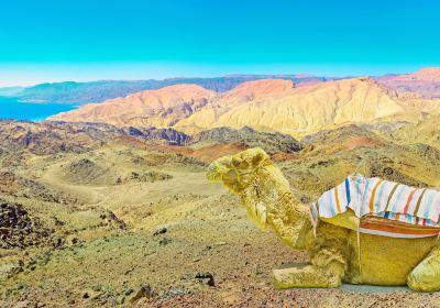 Red Sea and Sinai Peninsula