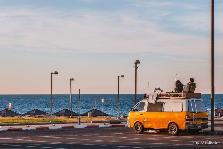 Tel Aviv Port2