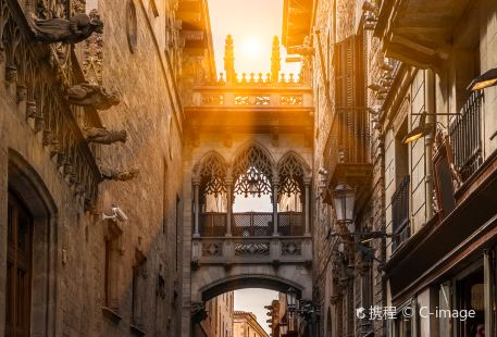 Gothic Quarter (Barri Gotic)