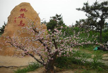 Taohua Island Customs Park