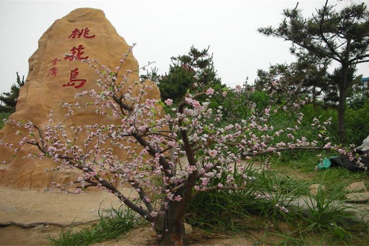 Taohua Island Customs Park1