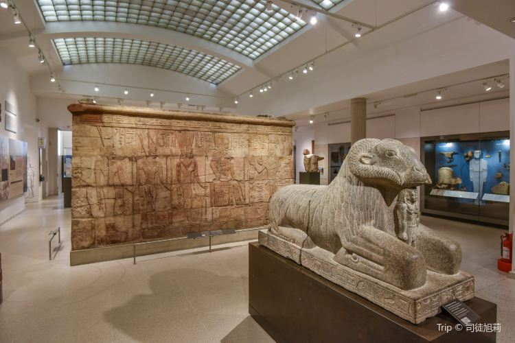 Ashmolean Museum of Art and Archaeology1