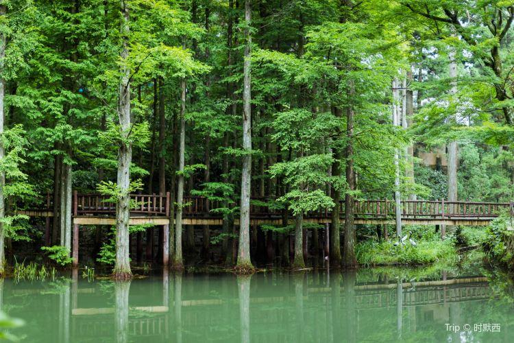 화딩 국가산림공원4