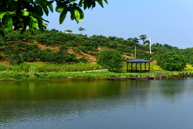 Weishui Scenic Area2