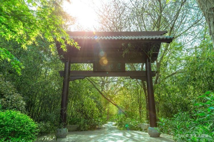 Quanshan Forest Park2