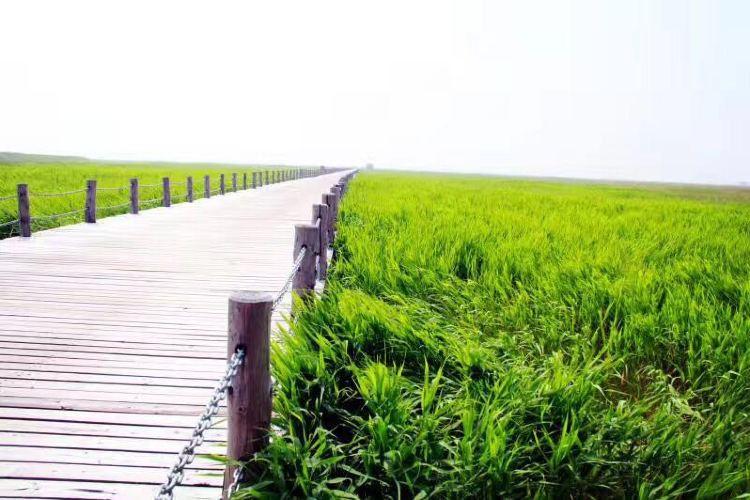 룽안차오 국립습지공원3