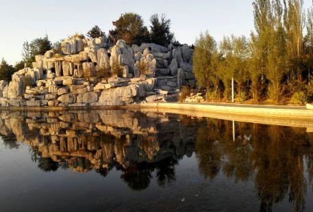 Jinsha Botanical Garden
