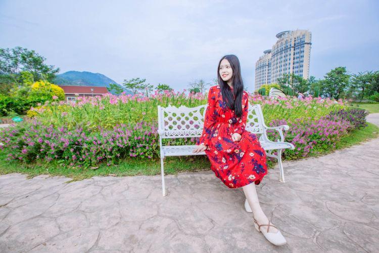 Ke Tianxia Zui Die Gulvse Manor4