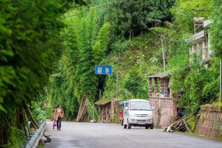 Wangyu Ancient Town4