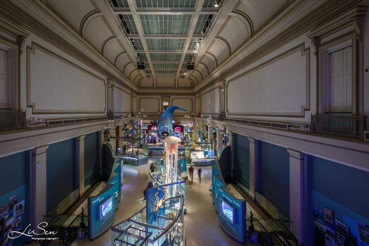 Smithsonian National Museum of Natural History4