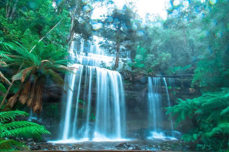 Mount Field National Park2