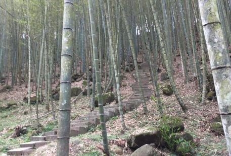 Chang Yuan Zun Trail