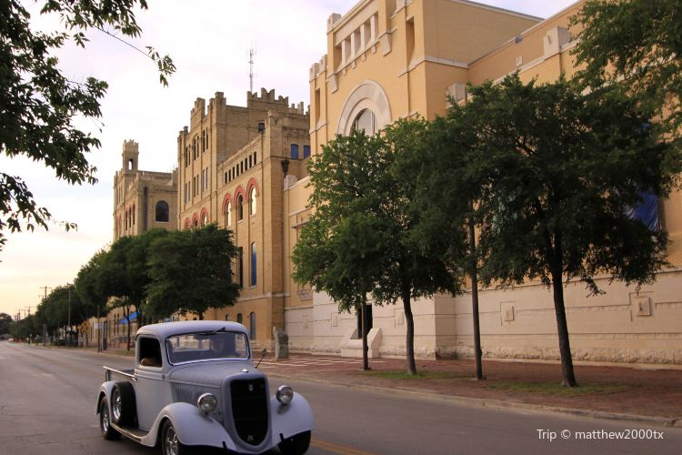 San Antonio Museum of Art1