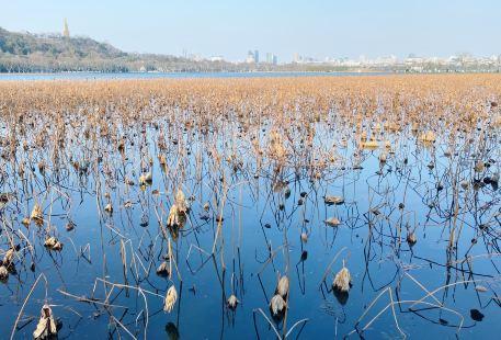 Hangzhouxihufengjingmingshengqu-xihuyoujing Park