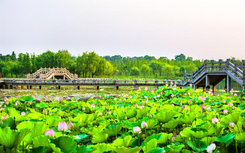 仙山湖風景區