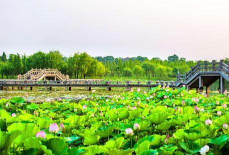 Xianshan Lake Scenic Area