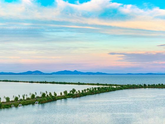 Chaohudiqu Wetland