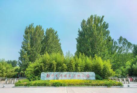 黃河國家濕地公園