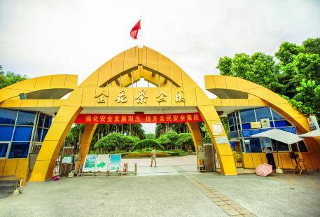 金花茶公園