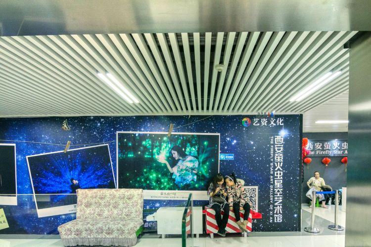 螢火蟲星空藝術館
