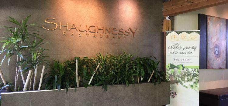 Shaughnessy1