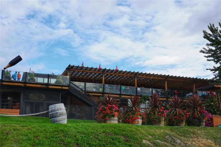 Summerhill Pyramid Winery3