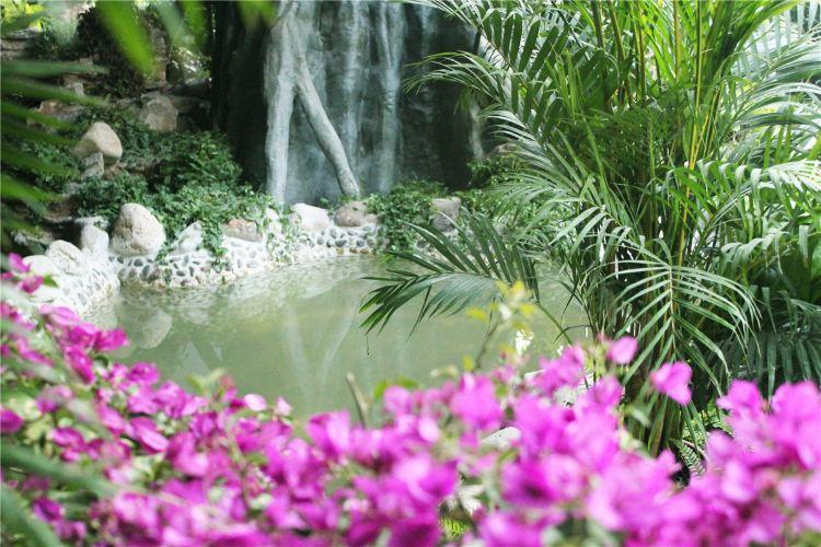 阿爾卡迪亞溫泉1