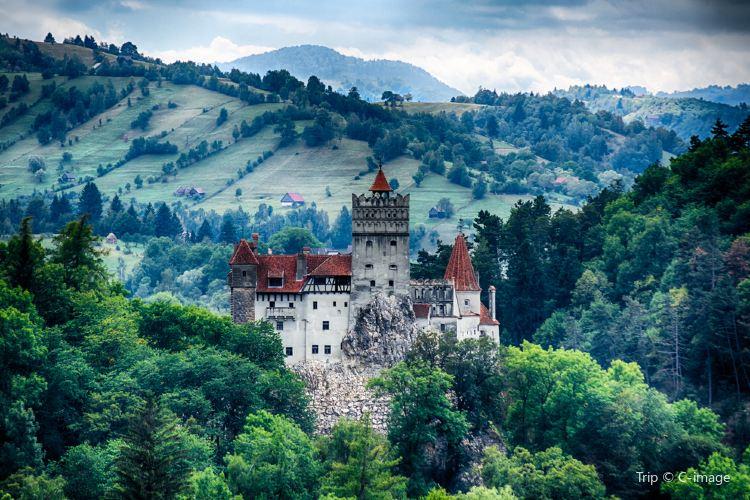 布朗城堡4