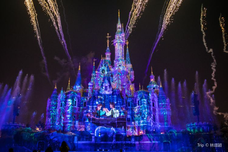 Ignite the Dream - A Nighttime Spectacular of Magic and Light4
